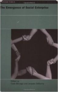 The Social Enterprise, Towards a Theoretical Socio-economic Approach